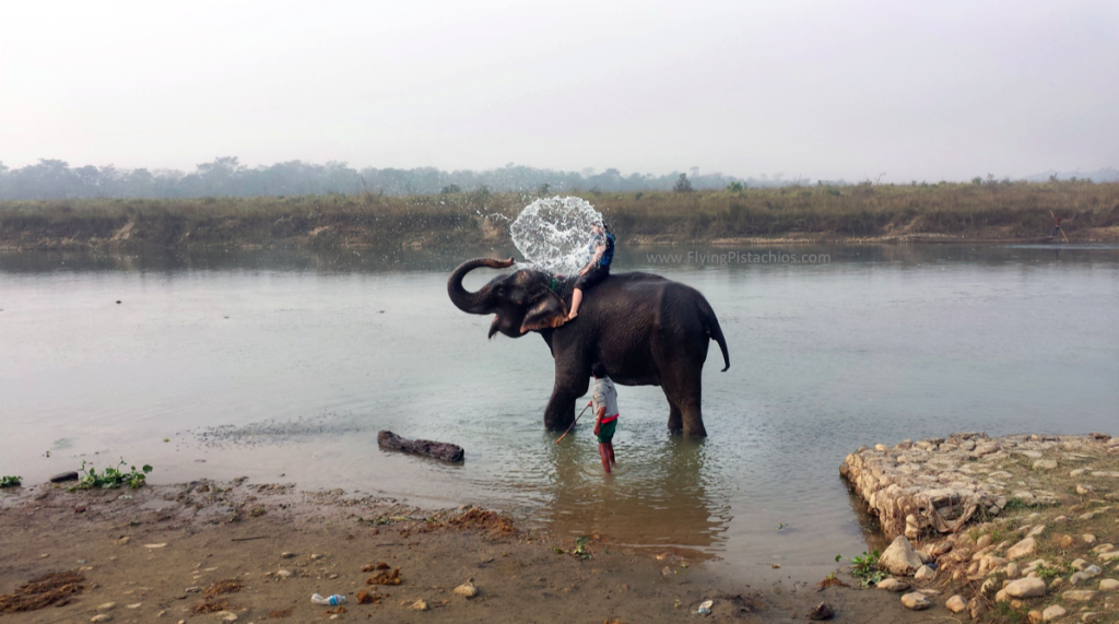 Chitwan Nepal